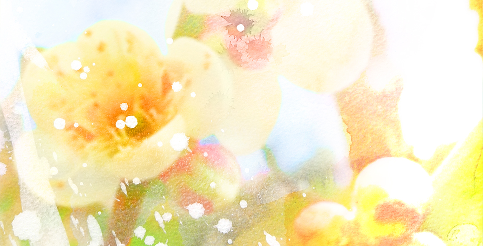 ワンネスアート・トップ画像2